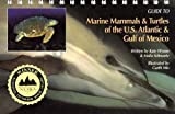 img - for Guide to Marine Mammals & Turtles of the U.S. Atlantic & Gulf of Mexico book / textbook / text book