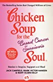 img - for Chicken Soup for the Breast Cancer Survivor's Soul: Stories to Inspire, Support and Heal (Chicken Soup for the Soul) book / textbook / text book