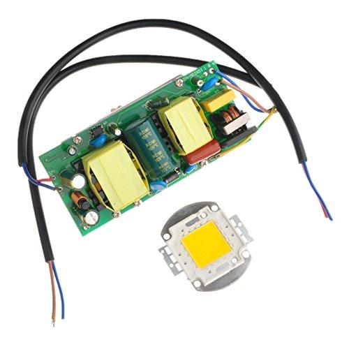 Ronshin 100W Led Lamp Driver Power Supply + 100W Led Smd Chip Light Lighting Warm White High Power Energy Saving Diy Ba00661-1