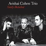 Seattle - Avishai Cohen Trio