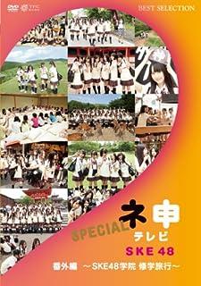 ネ申テレビ番外編 ~SKE48学院 修学旅行~ [DVD]