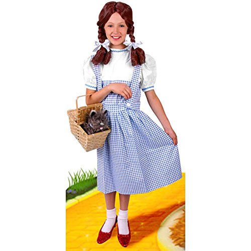 Child's Wizard of Oz Dorothy Costume (Size: X-Large 12-14)