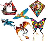 Schylling 3-D Kites Specialty Kites  (styles and colors vary)