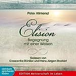 Elision: Begegnung mit einer Weisen | Peter Allmend