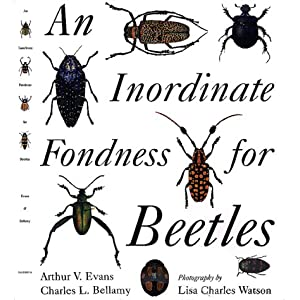 An Inordinate Fondness for Beetles: Arthur V. Evans, Charles L. Bellamy: 9780520223233: Amazon.com: Books