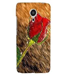 ColourCraft Beautiful Rose in Rain Design Back Case Cover for MEIZU MX5
