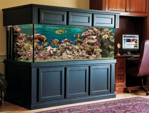 200 Gallon Fish Tank : MARINELAND? BioWheel LED Aquarium Kit Give your fish a great home ...
