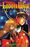 Record of Lodoss War: The Grey Witch, Vol. 1 - A Gathering of Heroes (1562199196) by Mizuno, Ryo