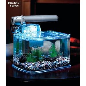 3 gallon betta aquarium kit betta fish siamese for Betta fish tank temperature