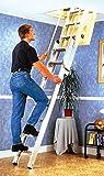 Youngman 306340 2 sections 14 marches Escalier de grenier Deluxe...