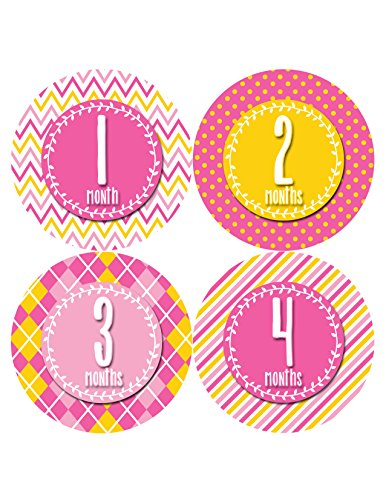 Months in Motion 394 Monthly Baby Stickers Baby Girl Months 1-12 Milestone - 1