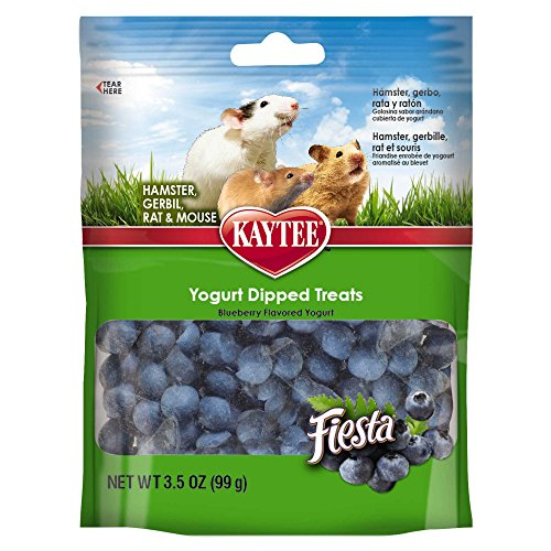 Kaytee Fiesta Blueberry Flavored Yogurt Dipped Hamster & Gerbil Treats 51BXvsFwC 2BL