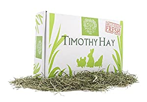 Small Pet Select Timothy Hay Pet Food, 10-Pound