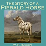 The Story of a Piebald Horse | W. H. Hudson