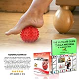 Lacrosse-Blle-or-Igel-Massageball-Roller-BESTE-High-Density-Deep-Tissue-Akupressur-GRATIS-EBOOK-Myofascial-Release-Druckpunkt-Fersensporn-Fureflexzonenmassage-Stress-Therapie