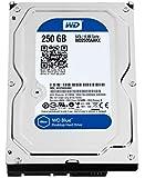 Western Digital 250 GB 3.5-Inch  7200 RPM SATA III 16 MB Cache Desktop Hard Drive WD2500AAKX (Blue)