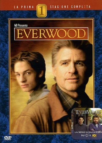 Everwood Stagione 01 [IT Import]