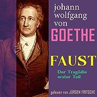 Faust. Der Tragödie erster Teil Hörbuch