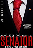 Seduced By The Senator [Kindle Edition]