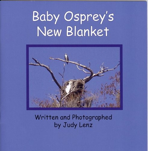 Baby Osprey'S New Blanket front-443087