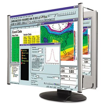 Kantek LCD Monitor Magnifier Filter, Fits 19 Inch Widescreen LCD Screen (MAG19WL)