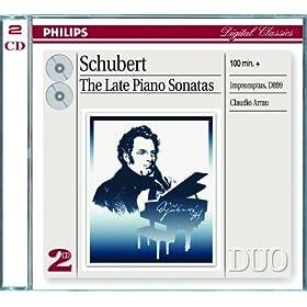 Franz Schubert: Piano Sonata No.20 in A, D.959 - 2. Andantino