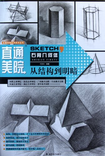 Gypsum Geometry- from Structure to Light and Dark - Go Straight to Academy of Fine Arts (Chinese Edition) PDF
