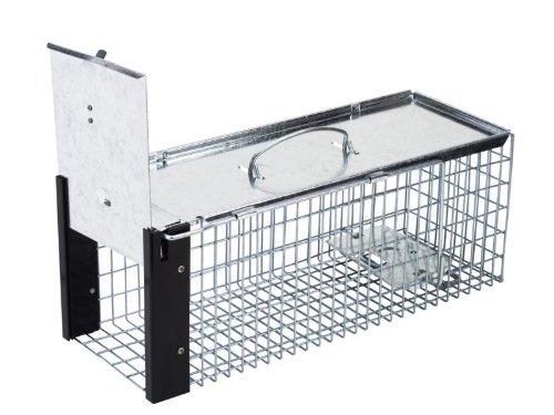 - Rat Cage Trap Stv075 Pb0020 5055553911124 By Stv