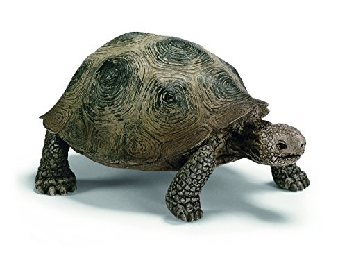 schleich-giant-turtle
