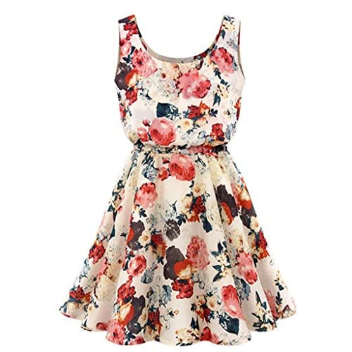 Buy 20 Womens Floral Dresses