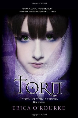 Torn (Torn Trilogy, #1)