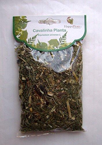 Organic Bio Natural Loose Teas - From Portugal - Horsetail Tea (Equisetum Arvense L.) - 5 X 50Gr Bags = 250Gr