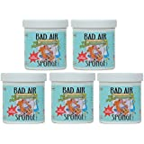 Bad Air Sponge Odor Neutralant Neutralizes and Absorbs Odors 14oz (Pack of 5)