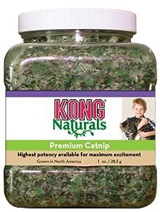 Kong Natural Premium Catnip pour Chiens 1 OZ