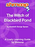 img - for Shmoop Learning Guide: The Witch of Blackbird Pond book / textbook / text book