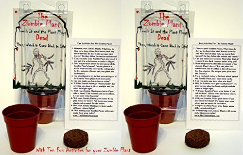 (2) ZOMBIE PLANT CHRISTMAS GIFT or Birthday Party Favors - Touch it and it