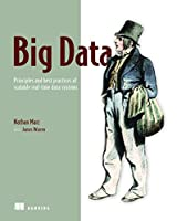 Big Data: Principles and best practices of scalable realtime data systems Front Cover