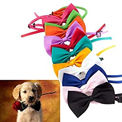 Lovely Dog Bow Tie Neck Accessory Necklace Collar Puppy Bright Colour Pet Bow by Mcitymall