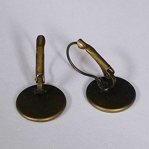 GiftJewelryShop Bronze Retro Style Happy New Year Photo Dangle Leverback Earrings 14mm Diameter