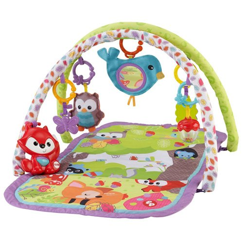 Fisher-Price 3-in-1 Musical Activity Gym (Gym Fisher Price Baby compare prices)