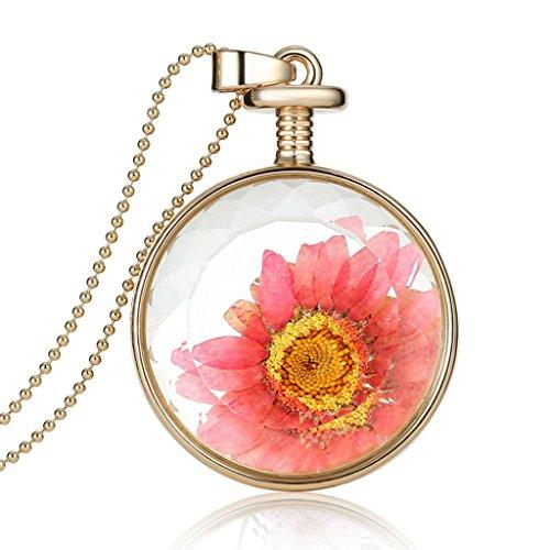jiayiqi-gioielli-donne-bella-vera-margherita-fiore-asciutto-collare-collana-vetro-cabochon-ciondolo-