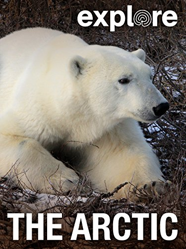 Explore: The Arctic