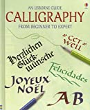 img - for Calligraphy: From Beginner to Expert (Usborne Guide) book / textbook / text book