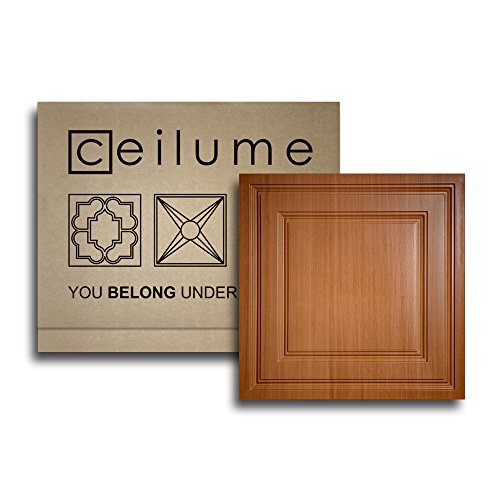 10 pc - Ceilume® Stratford Caramel Wood Feather-Light 2x2 Lay In Ceiling Tiles - For Use In 1