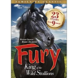 Fury: The King of the Wild Stallions