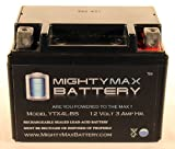 YTX4L-BS Replacement for Scooter YAMAHA CY50 Riva Jog 50CC 92-'01 - Mighty Max Battery brand product