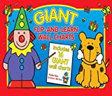 Giant Flip and Learn Wall Chart