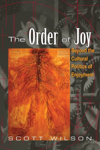 The Order of Joy: Beyond the Cultural Politics of Enjoyment (Psychoanalysis and Culture)