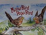 img - for Mama Bird Papa Bird book / textbook / text book