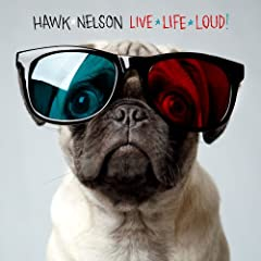 Hawk Nelson Live Life Loud lyrics